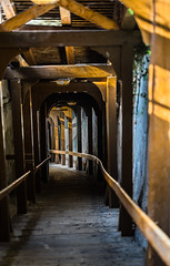 In restless dreams I walked alone (*Capture the Moment*) Tags: 2016 architektur berne bokeh dof fotowalk holz schweiz sommer sonne sonya7mii sonya7ii sonyilce7m2 stairs summer switzerland treppen wetter wood zeissbatis1885