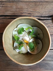 (robertwillem2) Tags: kantine vlaams restaurant bloempot lille food