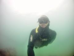 GOPR5926 (ambrogi_taubate) Tags: naturezaselvagem marinha mergulhando ubatuba sp brasil naturezamarinha fantstica apneia 10m setembro primavera 2016