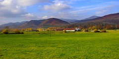 _DSC1240 (andoni.guridi) Tags: autumn fall spain otoño navarra 2014 basaburua