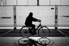 Night Rider, Pisa (D.J. De La Vega) Tags: italy bike bicycle silhouette nikon df pisa