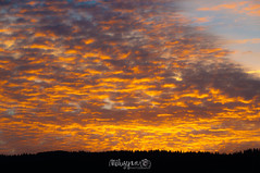 Embers morning (Mluzynn) Tags: sky orange cloud clouds landscape landscapes nikon skies ciel nikkor nuage nuages paysage paysages cloudporn embers ciels cieux d90 braises skyporn