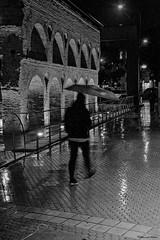 Llueve sobre mojado (Retratista de paisajes y paisanajes) Tags: espaa blancoynegro landscape sevilla paisaje andalucia acueducto otoo nervion lacalzada caosdecarmona