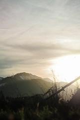 (giu.spad) Tags: light sun white mountains grass vertical clouds germany landscape bavaria dawn countryside nikon soft quiet peace magic burst stillness d3000 spadaforaphoto