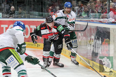 """DEL15 Kölner Haie vs. Augsburg Panthers 10.12.2014 014.jpg • <a style=""""font-size:0.8em;"""" href=""""http://www.flickr.com/photos/64442770@N03/15841929240/"""" target=""""_blank"""">View on Flickr</a>"""