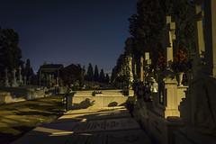 Cementerio de San Fernando, Sevilla
