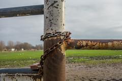 Lock and chain (Jorden Esser) Tags: fence lock meadow chain vlaardingen otherkeywords