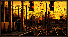 Big Hair meets Sunset Liners (david.hayes77) Tags: sunset shed lancashire bighair backlit contrejour glint containers carnforth 2014 class66 intermodal 66232 sunsetliners