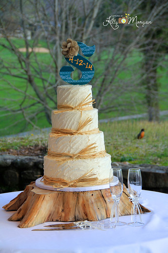 """A sculpted buttercream wedding cake. • <a style=""""font-size:0.8em;"""" href=""""http://www.flickr.com/photos/50891271@N03/16160590400/"""" target=""""_blank"""">View on Flickr</a>"""