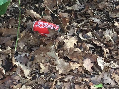 Can  - Coca Cola