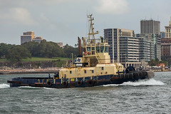 Bullara - TUG Sydney Harbour-2469 (A u s s i e P o m m) Tags: australia newsouthwales queenmary2 cunard portjackson