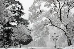 Jardin du Grand-Rond, Toulouse, Haute-Garonne, Midi-Pyrénées (lyli12) Tags: france landscape nikon hiver jardin neige toulouse paysage fontaine parc ville urbain flocon hautegaronne d7000