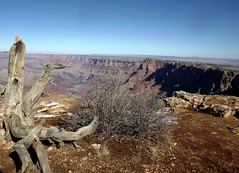 South RIm/ Grand Canyon (h willome) Tags: winter arizona grandcanyon southrim grandcanyonnationalpark 2015