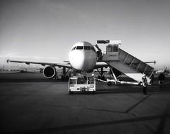 Korea: Peach's Plane (Jon-F, themachine) Tags: travel vacation plane airplane sony airplanes planes trips pointandshoot  iphone 2014   iphone4 jonfu snapseed dscwx70