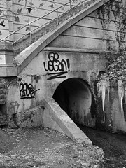 Go Vegan (tim.perdue) Tags: park columbus ohio bw white black monochrome wall stairs graffiti vegan stream echo go tunnel glen ravine icicles clintonville
