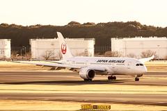 JAL JL708 (B787-8 JA828J) (yoshi_sawa) Tags: airport airlines narita jal nrt japanairlines rjaa boeing7878