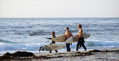 Asilomar 7 (jolee-mer) Tags: ocean california seaweed beach walking three boards sand surf waves pacific shore surfers trio westcoast asilomar wetsuits youngmen