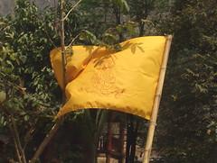 King Rama IX Golden Jubilee Flag