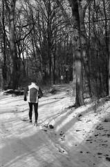Ricoh TLS 401 with Helios 44-2 - Jogger in Winter Wood (Kojotisko) Tags: people bw streetphotography brno creativecommons czechrepublic streetphoto ilforddelta400 ilforddelta helios442 ricohtls401 helios442258 ricohtls