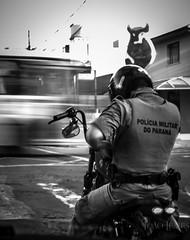 Police riding a Bobber (Jlemes) Tags: road old white black classic cars ford chevrolet branco brasil blackwhite king ride indian sunday police bikes preto harley curitiba e hotrod rides parana puma davidson hdr brasilia bsa variant gt40 opala 883 davi cruser