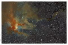 Egret Nebula (daniloz) Tags: illustration watercolor drawing space ilustrao desenho espao constellation aquarela daniloz