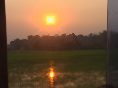 Sunset of Laotian Rice Paddies
