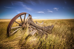 Bleached Trust (Wayne Stadler Photography) Tags: old summer canada abandoned rotting field wheel rural wagon countryside wooden alberta prairies derelict