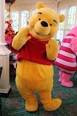Winnie-the-Pooh (sidonald) Tags: tokyo disney tokyodisneyland tdl tokyodisneyresort tdr greeting      winniethepooh