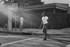 my strut in glory (Carey Moulton) Tags: street miami moment decisive wynwood