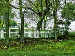 Lakeside (Lana Pahl / Country Star Images) Tags: fencefriday lakeside gazebo waterfront green backyard flowers trees