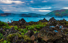 Have a dip (M.D.Lord) Tags: travel blue summer plants water rock swim canon relax outdoors island eos lava iceland bath relaxing lagoon minerals sulphur volcanicisland volcanic spa geothermal canoneos bluelagoon lavafield geothermalspa 2016 silica reykjanespeninsula grindavik 70d photographyoutdoor