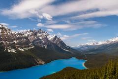 Peyto Lake (rezateddy) Tags: rockies canadianrockies canada peyto peytolake