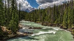 Summer (murph le (Away)) Tags: summer britishcolumbia river kicking horse yoho nationalpark nature rocks cans2s canon6d canada