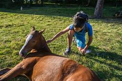 Young men and young horse (TM Photography Vision) Tags: pony pferd boy jura riehen basel schweiz switzerland suisse sony a850 minolta 20mm landscape etang de la gruere
