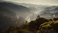 Comptche Road (Dan Brekke) Tags: mendocino smoke northerncalifornia california comptcheroad mendocinocounty