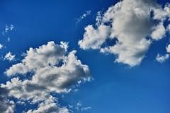 20160830_DP3M0524 (NAMARA EXPRESS) Tags: landscape sky cloud blue weather deepsky deepblue evening summer fine outdoor color toyonaka osaka japan foveon sigma dp3 merrill namaraexp