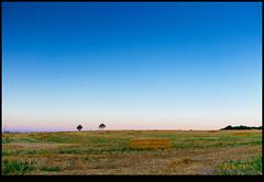 160709-9652-XM1.jpg (hopeless128) Tags: fields france sky eurotrip 2016 tree strawbales haybales nanteuilenvalle aquitainelimousinpoitoucharen aquitainelimousinpoitoucharentes fr