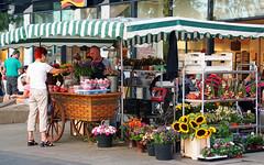 Blumenstand / Florist (ingrid eulenfan) Tags: flickrfriday market leipzig markt wochenmarkt blumenstand blumenverkäufer blumen flowers flower seller flowerseller florist