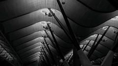 Wood waves in the airport (Eugenio Sanchez Photography) Tags: madrid airport t4 blackwhite bw blancoynegro wood roof barajas adolfosuarez aeropuerto terminal4 españa spain madera onda