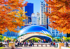 Chicago Fall Colors ((Jessica)) Tags: leaves fallfoliage reflections orangeleaves downtown autumn bean cloudgate millenniumpark fall foliage people tourists nex5t illinois buildings pw chicago skyscrapers midwest lightroom smugmug