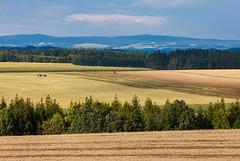 Letní políčka v Čechách (Honzinus) Tags: pole fields léto summer krajina čechy česko skrovnice zemos český agroculture traktor orlické hory