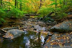 Hacklebarney State Park - Chester, NJ (Christian Montone) Tags: montone christianmontone october newjersey hacklebarneystatepark chester nature fall autumn waterfalls landscape park
