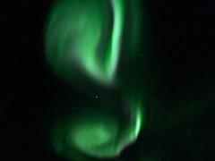 La mia aurora ..sogni che si avverano.. (starsinheavenaline) Tags: sognichesiavverano sogni dream kakslauttanen finland lapland igloo nottimagiche notti cieliverdi stelle star magiaincielo cielo magia magicsky magic greensky verde green lights luci lucidelnord northenlights northen auroraboreale borealis boreale aurora lamiaaurora