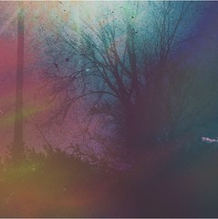 #thecountryside #popart #pop #art #artistic #artsy #beautiful #creative #creativity #daring #different #digitalart #motherearth #landscapes #autumn #deadtrees (muchlove2016) Tags: thecountryside popart pop art artistic artsy beautiful creative creativity daring different digitalart motherearth landscapes autumn deadtrees