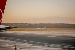 DSC_4519 (andrey.salikov) Tags: december latvia 2014   turkishairlines  rigaairport nikond60  180550mmf3556