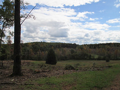 Panoramic #3