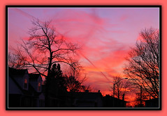 Hot Painted Sky (bigbrowneyez) Tags: trees houses windows sunset sky canada hot beautiful silhouette alberi clouds reflections fire amazing colours vibrant painted branches ottawa special cielo stunning colourful fabulous striking magical colori breathtaking fuoco caliente calor bello caldo momsstreet flickrhot hotpaintedsky