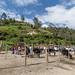 Mercado de animais em Otavalo