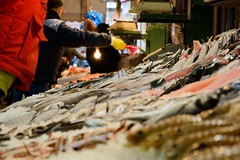 201501_thessaloniki_04 (eodworld) Tags: winter fish market greece macedonia thessaloniki holliday timeless makedonia