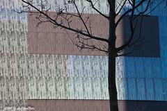 Man made versus nature (LeChienNoir) Tags: architecture canon utrecht library bibliotheek architectuur uithof 500d 2011 lechiennoir universiteitsgebouwen lechiennoirnl